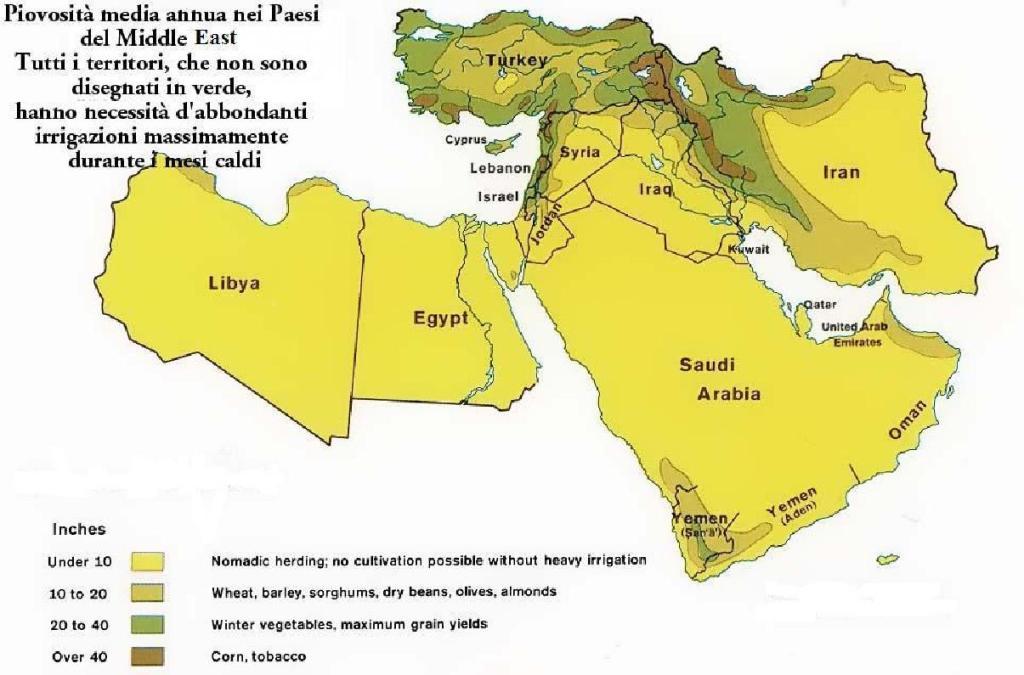 Livello piovosità in Medio Oriente