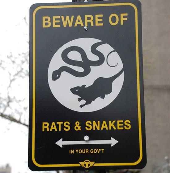 Ratti e Serpenti-