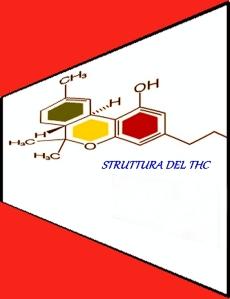 FORMULA DI STRUTTURA DEL THC