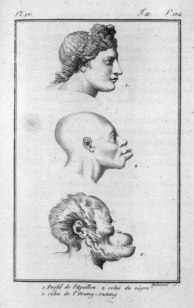 una-pagina-dellhistoire-naturelle-du-genre-humain